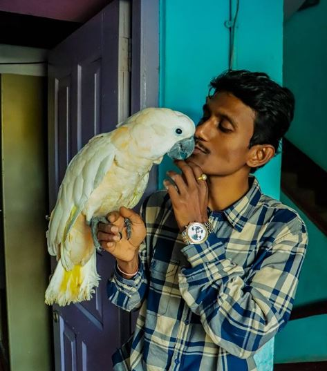 Parrot Dipankar Profile| Contact Details (Phone Number, House Address, Email ID)
